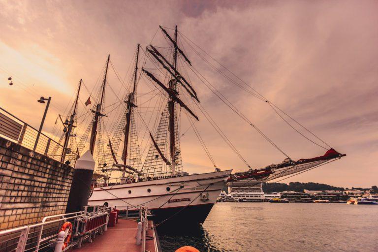 Royal Albatross Corporate Event Photographer Singapore